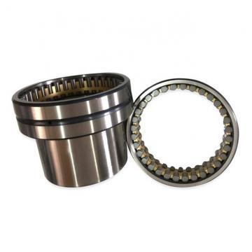 55 mm x 120 mm x 43 mm  FAG NJ2311-E-TVP2  Cylindrical Roller Bearings